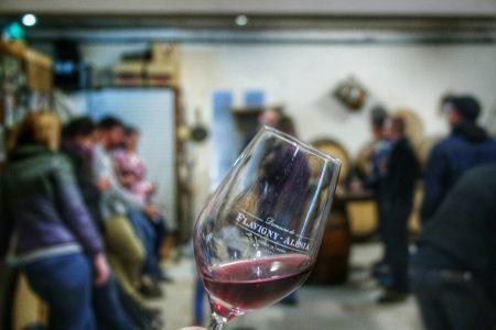 domaine-vignoble-flavigny-alesia-degustation-reception-mariage-27