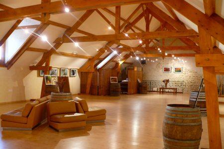domaine-vignoble-flavigny-alesia-exposition-12