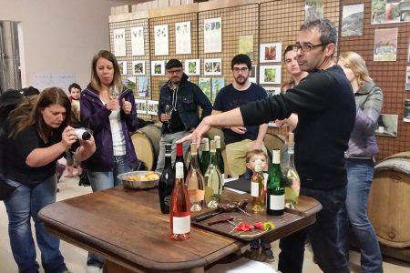domaine-vignoble-flavigny-alesia-degustation-reception-mariage-25