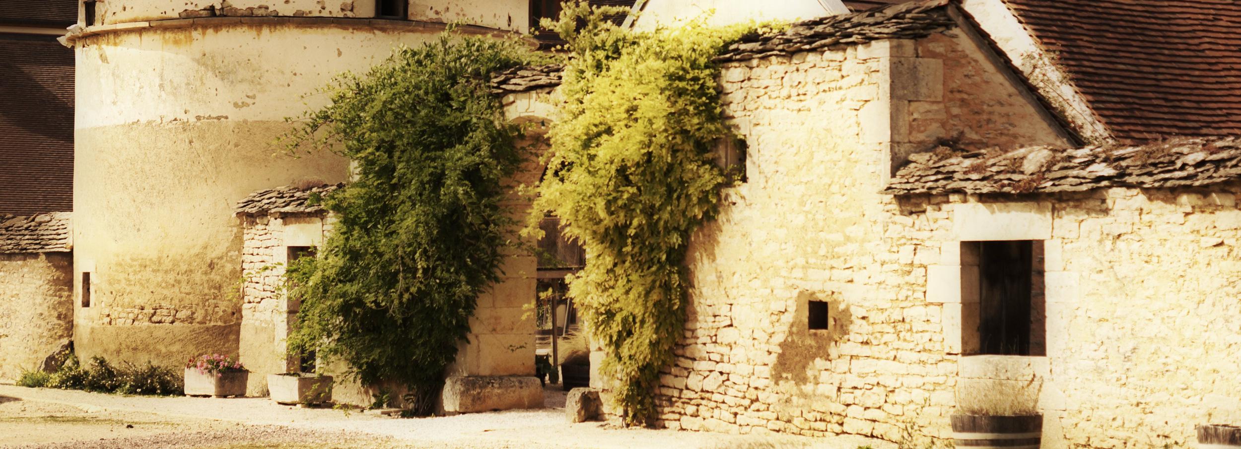 Domaine-vignoble-flavigny-alesia-tonneaux-pigeonnier-2